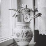 Kvety_leta